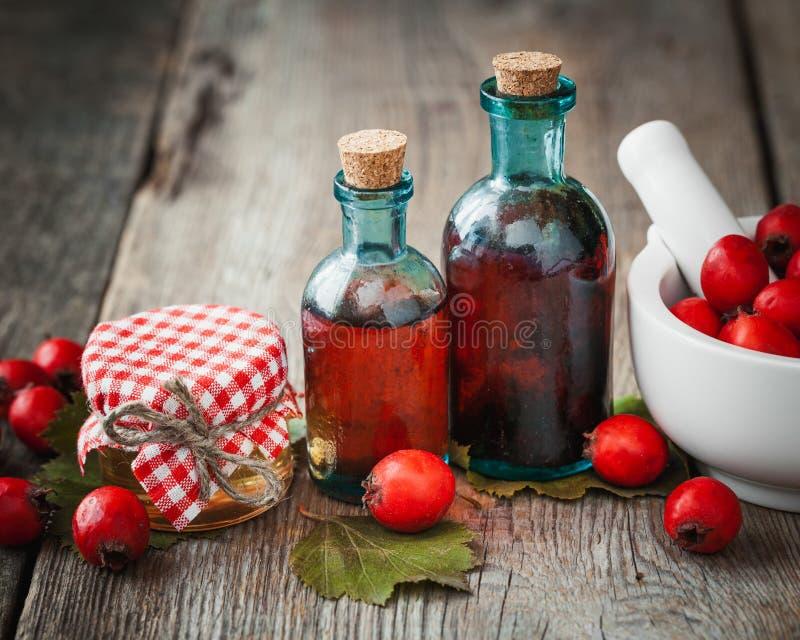 Krus av honung, tinkturflaskor och mortel av hagtornbär royaltyfri bild
