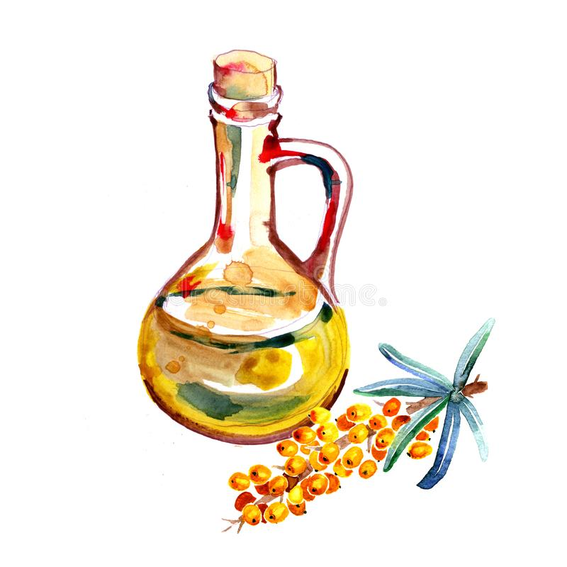 Krus och bär för olja för vattenfärghavsbuckthorn som isoleras på vit bakgrund stock illustrationer