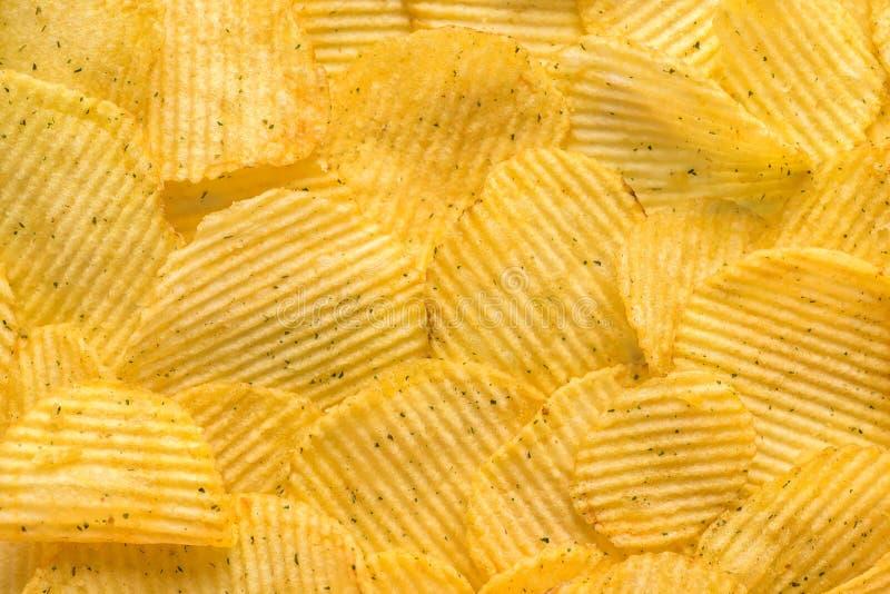 Krusiga potatischiper med salt och grönska gillar backgro arkivbilder