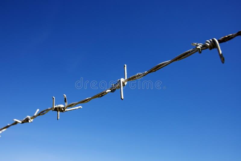 Kruszcowy drut kolczasty na niebieskiego nieba tle Wolności i uwięzienia pojęcie Pogodny niebieskiego nieba i stali barbeta druci zdjęcia stock