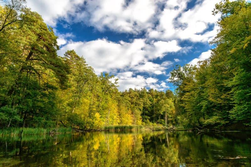 Krutynia. River Krutynia in Masuria in eastern Poland royalty free stock images