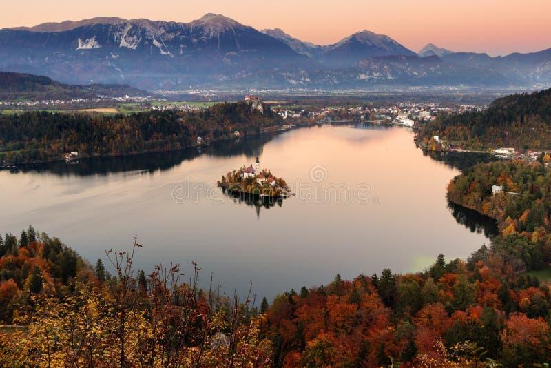 krwawiący jeziorny Slovenia fotografia stock