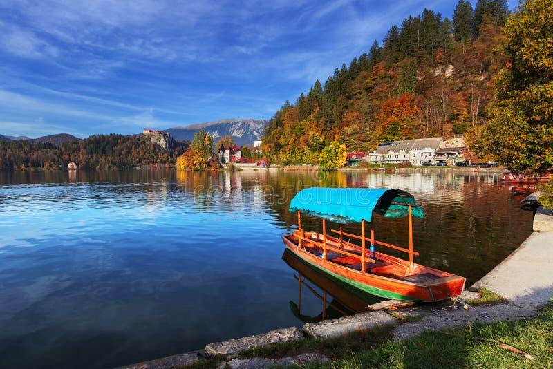 Krwawiący jeziorny Slovenia fotografia royalty free