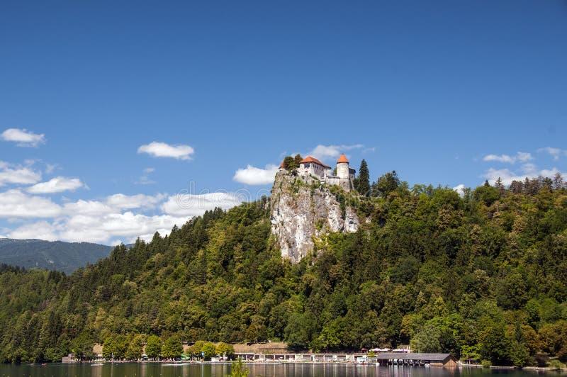 Krwawiący kasztel stary kasztel w Slovenia obraz stock