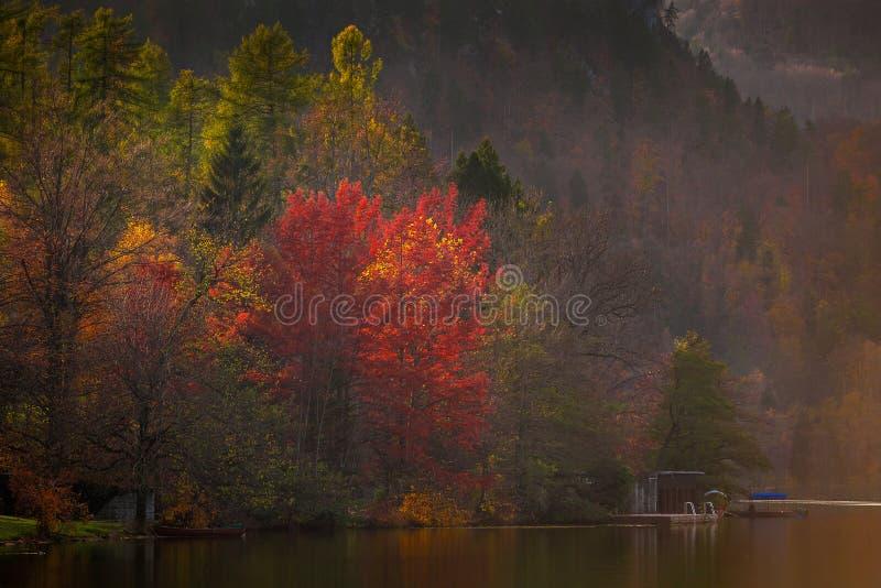 Krwawiący, Slovenia - jesieni Slovenia jeziorem Krwawiącym kolory obraz stock