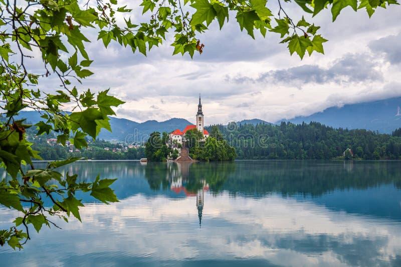Krwawiący, Slovenia - jezioro Krwawił Blejsko Jezero z odbija pielgrzymka kościół wniebowzięcie Maria i Juliańscy Alps zdjęcia royalty free