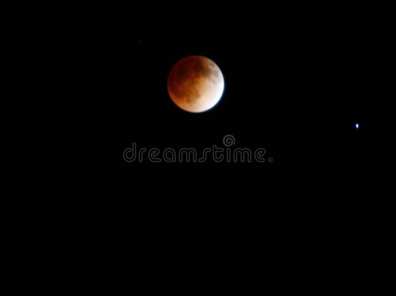Krwionośna księżyc fotografia royalty free