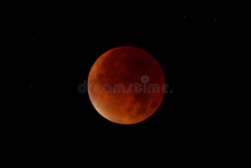 Krwionośna księżyc - Super księżyc zaćmienie obrazy royalty free