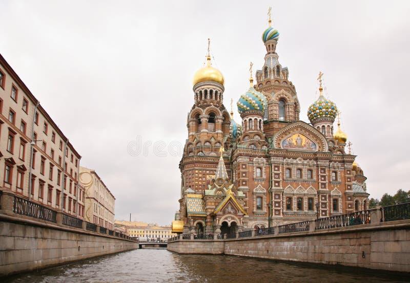 krwionośna Petersburg świątobliwa wybawiciela świątynia obrazy stock