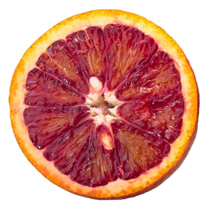 Krwionośna pomarańcze c x sinensis ringowy plasterek obrazy royalty free
