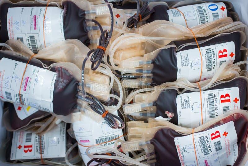 Krwionośna torba uzyskująca zdjęcie royalty free
