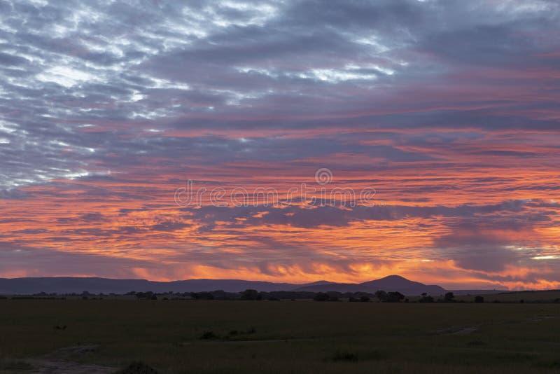 Krwionośny czerwony wschód słońca niebo nad Masai Mara równinami, Kenja obraz stock