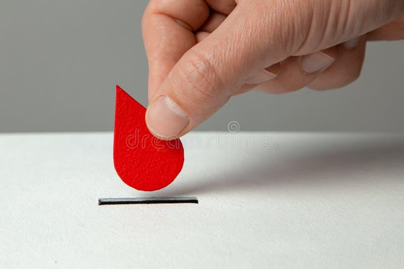 Krwionośny dawca Mężczyzna stawia kroplę krew w prosiątko banku jako darowizna Pojęcie daruje krew oprócz życia zdjęcia royalty free