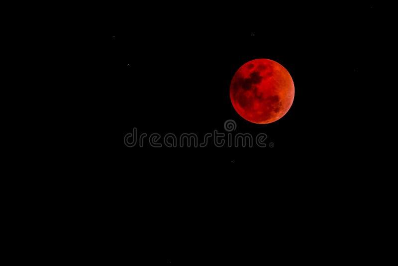 Krwionośny księżyc pojęcie czerwony księżyc w pełni przeciw czarnemu niebu obrazy royalty free