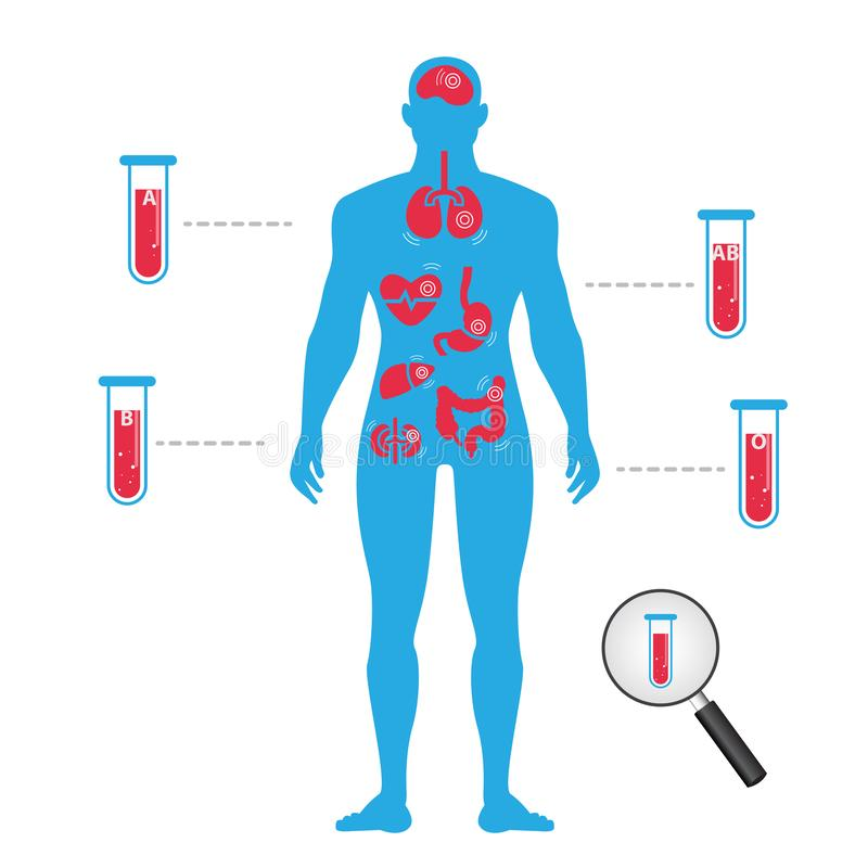 Krwionośny przetaczanie ciało istota ludzka Krwionośne grupy z ikon zdrowie Infographics ilustracja ilustracja wektor