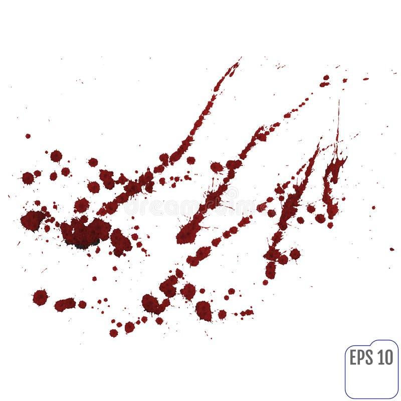Krwionośny splatter lub plama bryzgaliśmy z czerwonym atramentem odizolowywającym na bielu ilustracja wektor