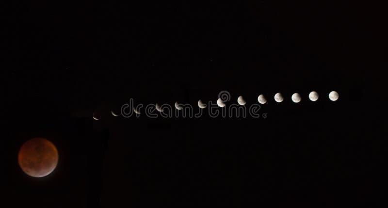 Krwista księżyc: Sumaryczny zaćmienie księżyca 2019 obrazy royalty free