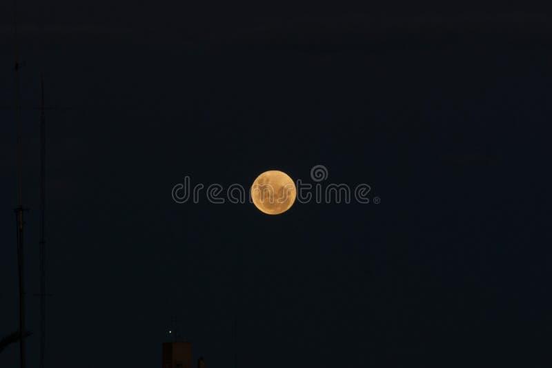 Krwista księżyc: Sumaryczny zaćmienie księżyca 2019 fotografia stock