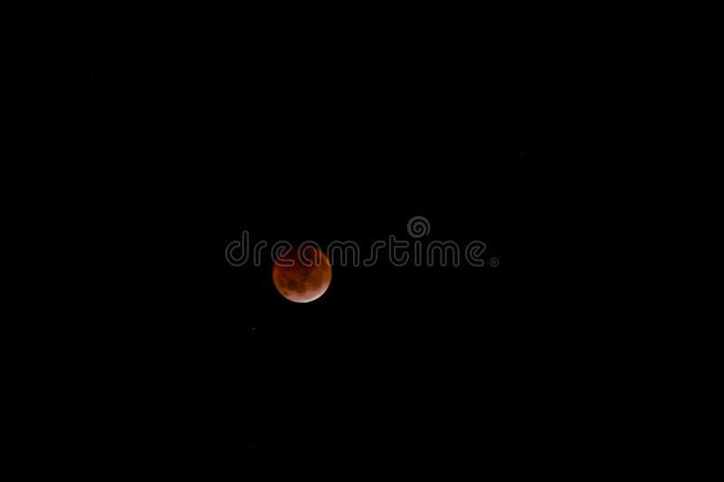 Krwista księżyc: Sumaryczny zaćmienie księżyca 2019 zdjęcia stock