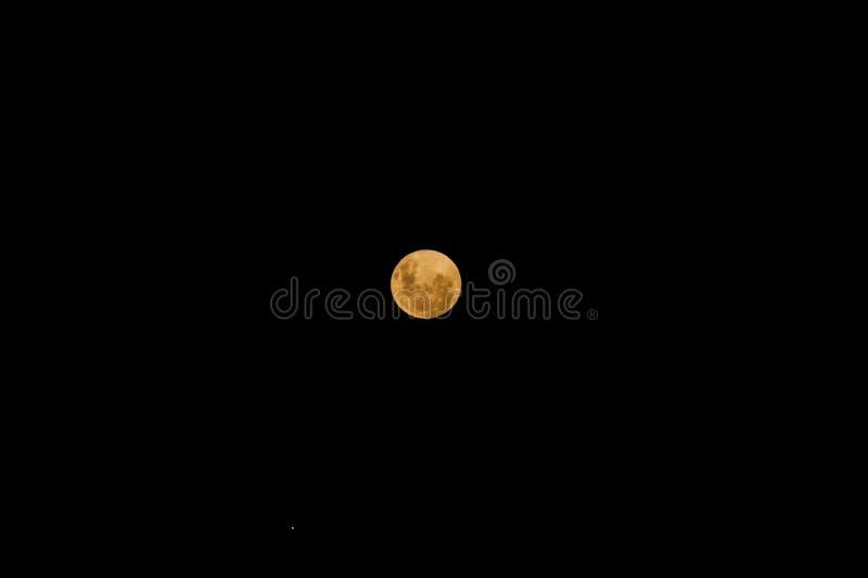 Krwista księżyc: Sumaryczny zaćmienie księżyca 2019 zdjęcia royalty free