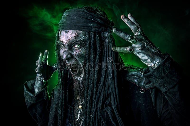 Krwisty pirat obraz stock