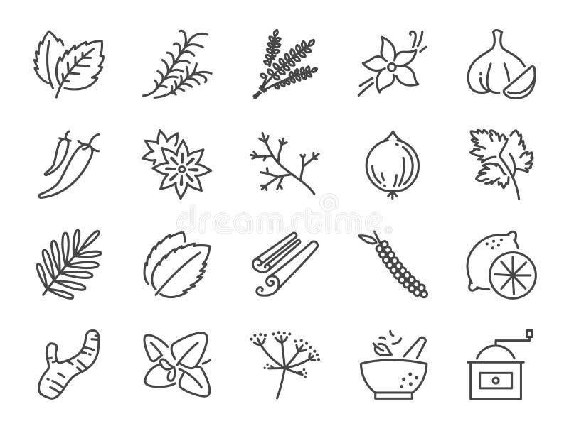 Krydda- och örtsymbolsuppsättning Inklusive symboler som basilika, timjan, ingefäran, peppar, persilja, mintkaramellen och mer vektor illustrationer