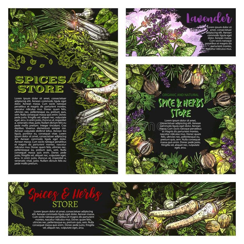 Krydda- och örtvetctorlagret skissar affischer stock illustrationer
