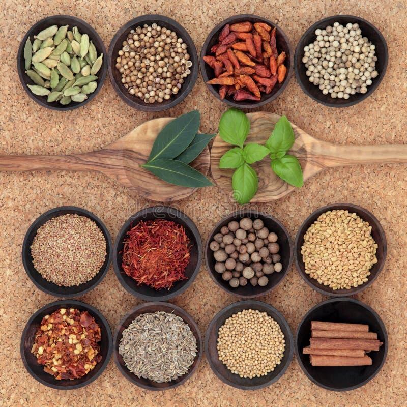 Krydda och Herb Sampler arkivbilder