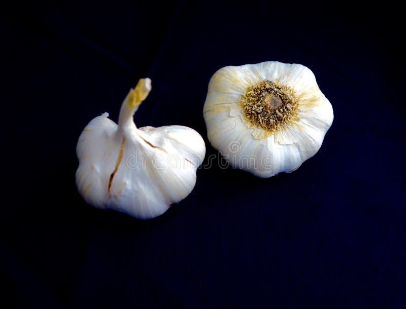 Kryddan för mat för två vitlökkulor kryddar kryddigt arkivbild