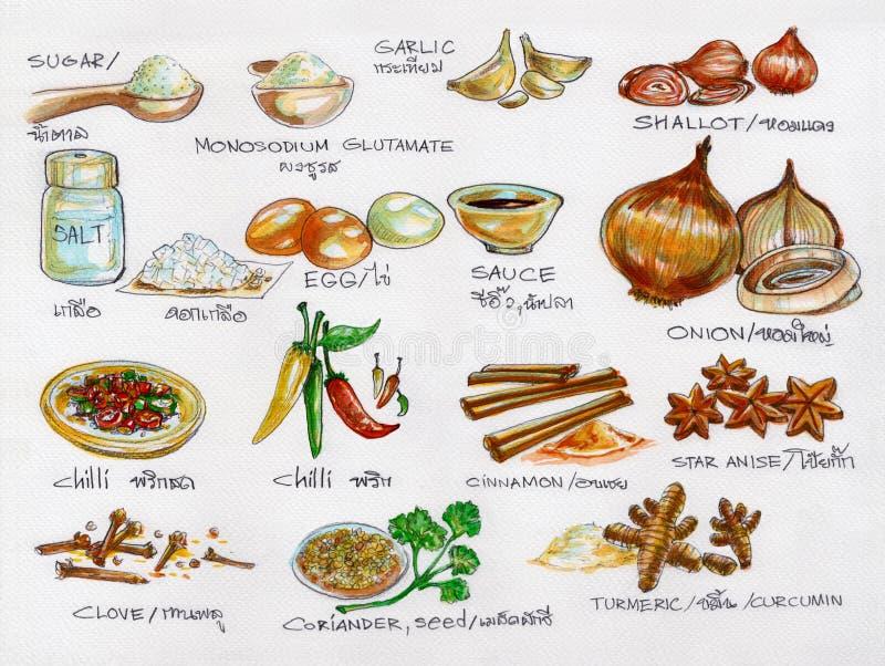 Kryddar råvaror som lagar mat vattenfärgmålning royaltyfri illustrationer