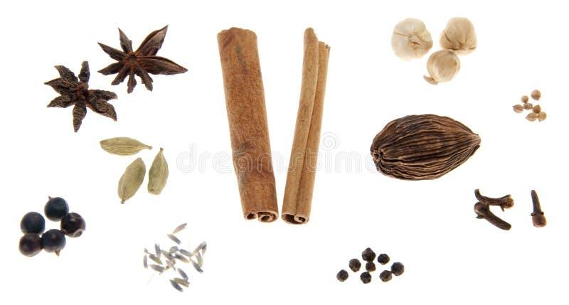 kryddar variation arkivbilder
