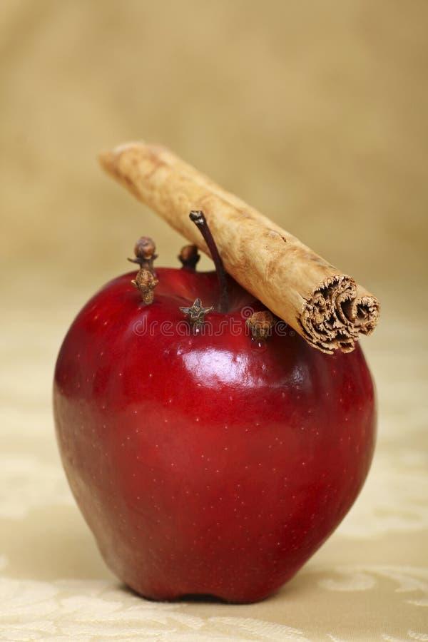 kryddat äpple arkivbild