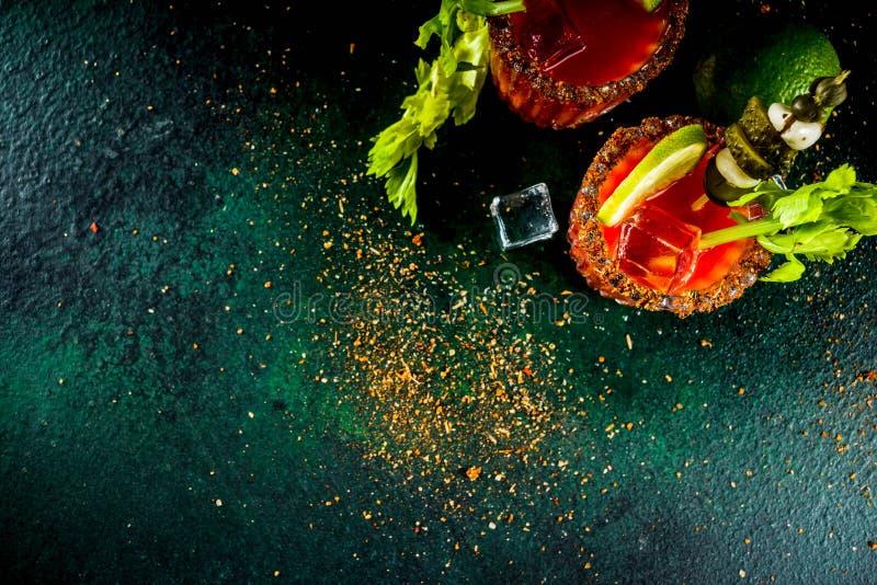 Kryddig blodiga mary coctail med garnering royaltyfri bild