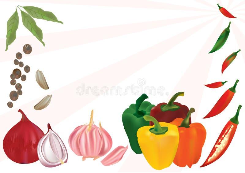kryddig eps-anstrykning stock illustrationer
