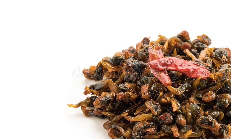 kryddig och söt rakknivmussla arkivbild