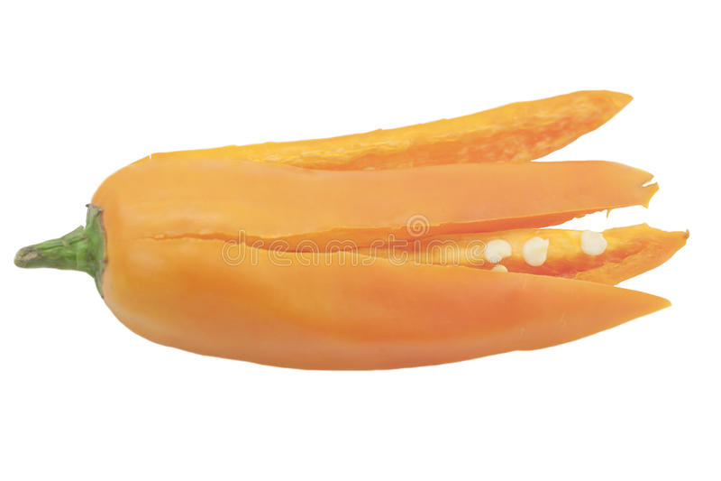 Kryddig orange chili fotografering för bildbyråer