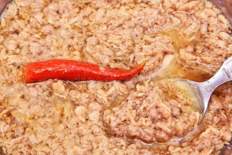 Kryddig stor bittonfisk arkivbilder