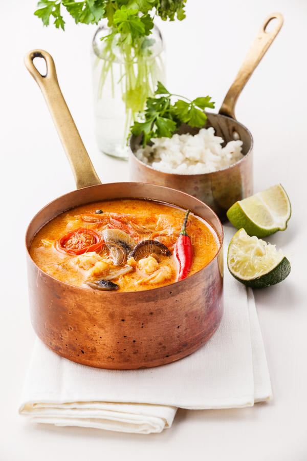 Kryddig thailändsk soppa Tom Yam fotografering för bildbyråer