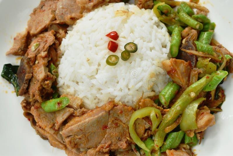 Kryddig uppståndelse stekt andköttcurry på ris i platta royaltyfria bilder