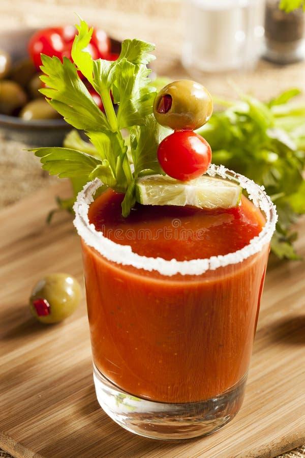 Kryddiga blodiga Mary Alcoholic Drink royaltyfri fotografi