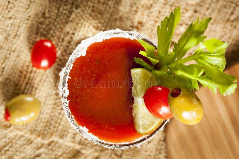 Kryddiga blodiga Mary Alcoholic Drink arkivfoto