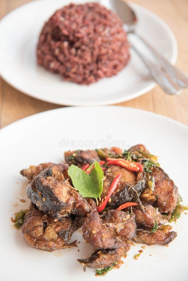 Kryddiga Fried Stir Catfish med basilika och riceberry ris royaltyfria bilder
