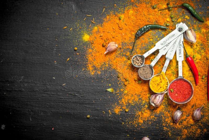 Kryddiga kryddor, i att mäta skedar arkivfoto