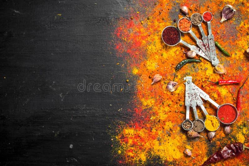 Kryddiga kryddor, i att mäta skedar royaltyfri foto