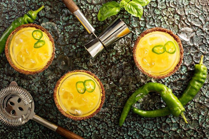 Kryddiga mangomargaritor med varm peppar royaltyfri fotografi