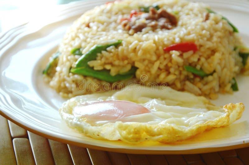 Kryddigt stekt risgriskött och basilika spricker ut med det stekte ägget på maträtt arkivfoto