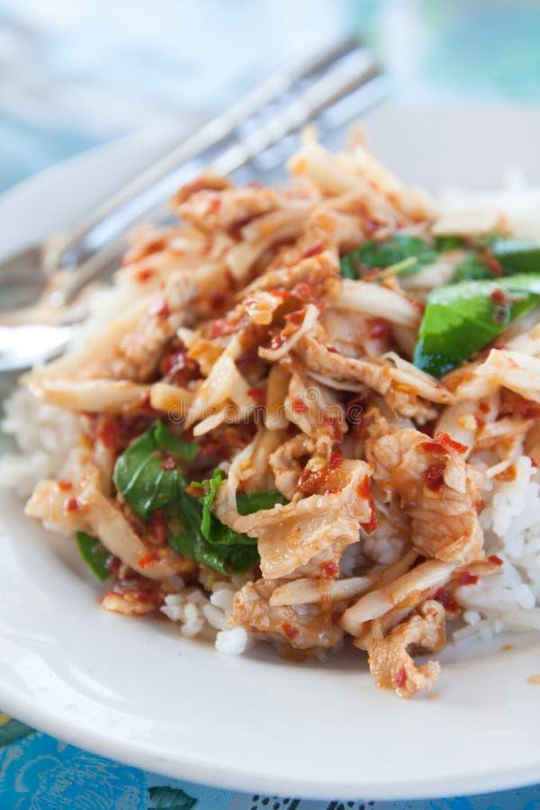 Kryddigt stekt under omrörning griskött med ris fotografering för bildbyråer