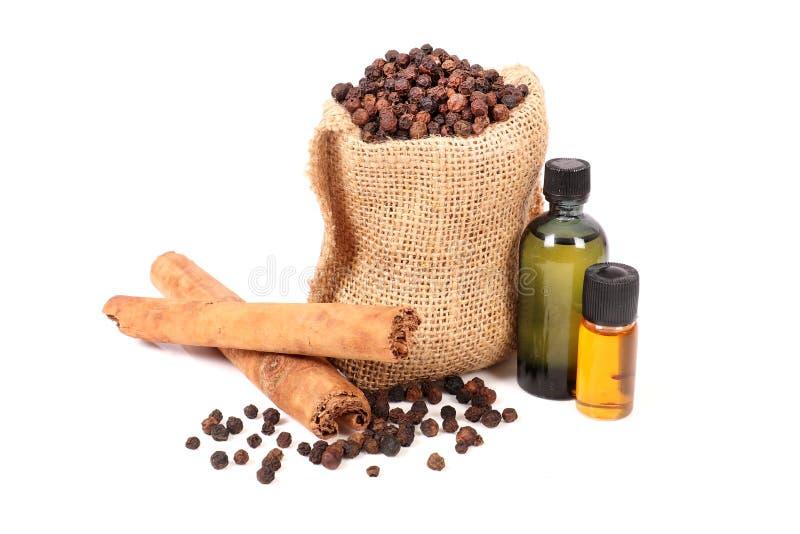 Kryddnejlika och kanelbrun olja royaltyfri bild