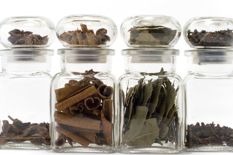 kryddnejlikor för anisebayleafkanel royaltyfri fotografi