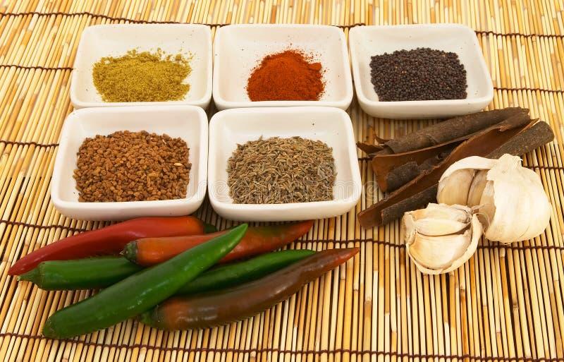 kryddor för 1 curry royaltyfri bild